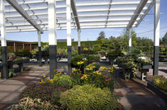 Flower garden center shop Royalty Free Stock Photo
