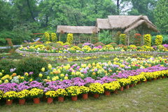 Flower garden in China Royalty Free Stock Photos
