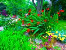Flower Garden. A flower garden in the corner of a residential lawn Stock Photos