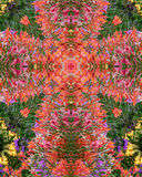 Flower garden cross. Kaleidoscope cross from photo of summer flower garden, Queen of Angels Monastery, Mt. Angel, Oregon Stock Images