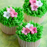 Flower garden cupcakes Stock Images