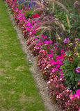 Flower garden. Diagonal view of flowers in Luxembourg gardens, Paris royalty free stock photo