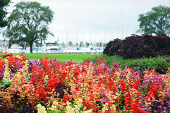 Flower Garden, Eichelman Park, Kenosha, Wisconsin stock photos