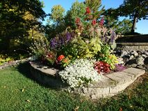Flower garden. In fall Royalty Free Stock Images