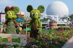 Flower Garden festival at Epcot stock image