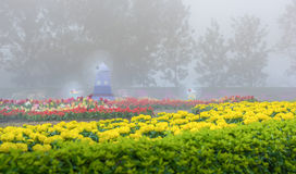 Flower garden in foggy scene Royalty Free Stock Photography