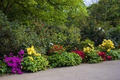 Flower garden in Greenwich park, London Royalty Free Stock Photography