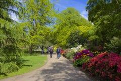 Flower garden in Greenwich park, London Stock Images