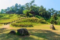 Flower garden at Huay Nam Dang National Park Visitor Center Stock Images