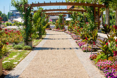 Flower garden at Lake Balaton in Balatonfured, Hungary. Royalty Free Stock Photography