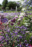 Flower Garden at the Luxemborg Palace, Paris Royalty Free Stock Photos