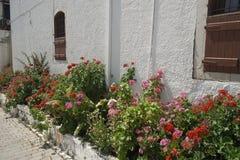 Flower garden near the house stock images