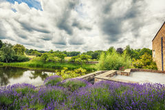 Flower garden in  park, England Royalty Free Stock Images