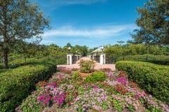 Flower Garden in the park Stock Photos