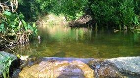 natural river hakwatunawa Stock Photography
