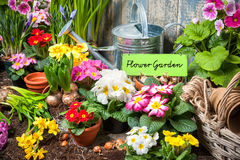 Flower garden sign Stock Photography