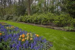 Flower garden in spring. On a sunny day Royalty Free Stock Photos