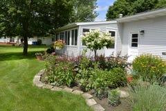 Flower garden in summer. Stock Image