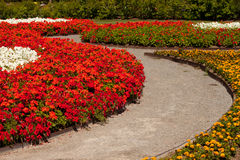 Flower Garden Trail Stock Images
