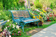 Flower garden. And vintage bench Stock Photography