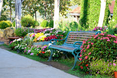 Flower garden and vintage bench. Vintage bench in flower garden Stock Photos
