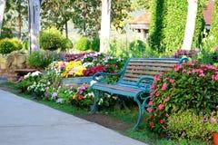 Flower garden and vintage bench Stock Photos