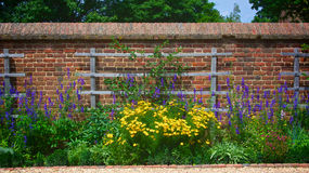 Free Flower Garden Wall With Trellis Stock Images - 31673154