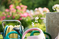 Flower garden with watering cans and hose Royalty Free Stock Photography