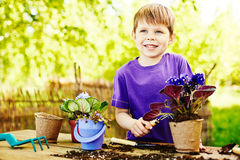Flower gardening lesson Royalty Free Stock Images
