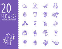 Flower and Gardening Tools Icons with White Stock Photography
