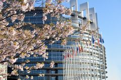 The flower gardens around the European Parliament in Strasbourg. Peach trees bloomed around the European Parliament in Strasbourg - France 05 Royalty Free Stock Images