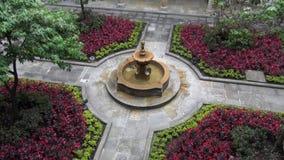 Flower Gardens, Gardening, Horticulture, Plants, Nature. Stock video of a flower garden stock video footage