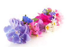 Flower garland Stock Image