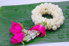 Flower garland used on Mother`s Day and Songkran day in Thai tradition. Fresh flower garland used on Mother`s Day and Songkran day in Thai tradition Royalty Free Stock Images