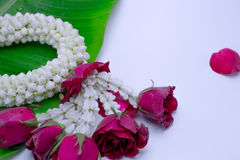 Flower garland used on Mother`s Day and Songkran day in Thai tradition. Flower garland used on Mother`s Day and Songkran day in Thai tradition on isolate white Royalty Free Stock Image