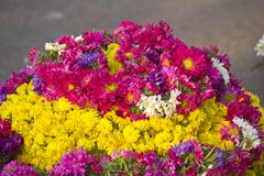 Flower garlands Stock Photography