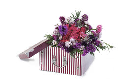 Flower Gift Stock Image