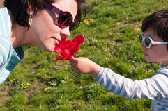 Flower Gift. A young girl offering a flower to mother stock images