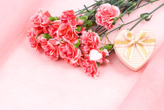 Flower and gift Royalty Free Stock Image
