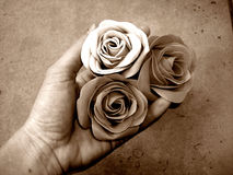A flower Gift. A hand that presents flowers Royalty Free Stock Photos