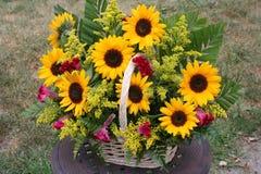 Flower gift basket. Image of a sun flower gift basket stock images