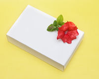Flower and Gift Box Stock Images