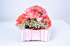 Flower gift box. Carnations in a gift box Stock Image