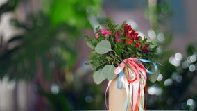 Flower gift in the rays of light stock footage