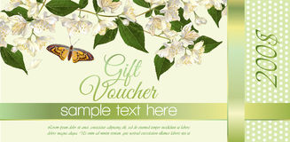 Flower gift vouchers Stock Images