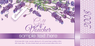 Flower gift vouchers Royalty Free Stock Image