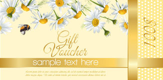 Flower gift vouchers. Vector natural cosmetics gift voucher with flowers. Design for cosmetics, store, beauty salon, natural and organic products, health care royalty free illustration