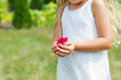 Flower girl hands full of petals Stock Image