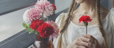 A flower in a girl`s hands royalty free stock photo