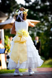 Flower girl at a wedding. Flower girl dropping rose petals during a wedding stock photo